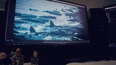 Photo of Релизный трейлер Death Stranding