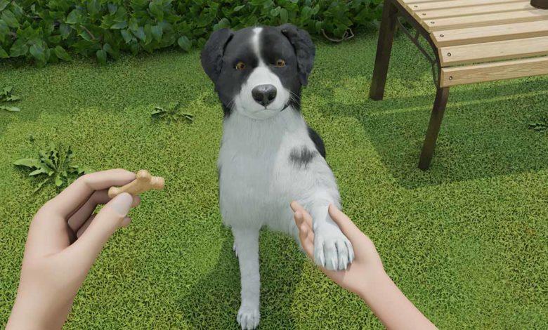 В Dog Trainer вы сможете завести собаку в виртуальной реальности