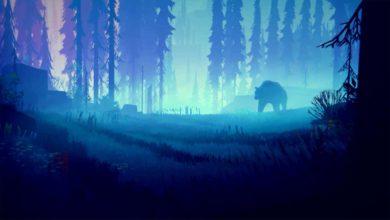 Among Trees доступна в раннем доступе Epic Games Store