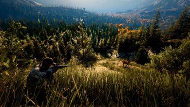 Photo of Hunting Simulator 2: Оружие, аксессуары и охотничьи костюмы