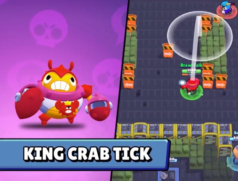King Crab Tick