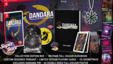 Коллекционное издание Dandara выйдет для Switch