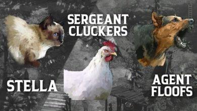 Кот, курица, собака и конкурс Speedrun: еще одно бесплатное обновление для Desperados 3