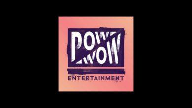 THQ Nordic приобретает венскую студию Pow Wow Entertainment