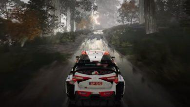 WRC 9: Ралли Япония