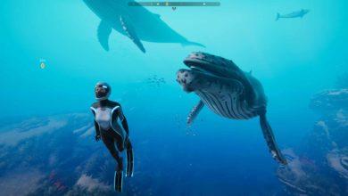 Photo of Записывайте красоту океана в новом режиме фотографии в игре Beyond Blue