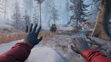 Демоверсия Winter Survival Simulator доступна во время Steam Games Festival